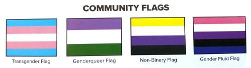 TransAmerica community flags